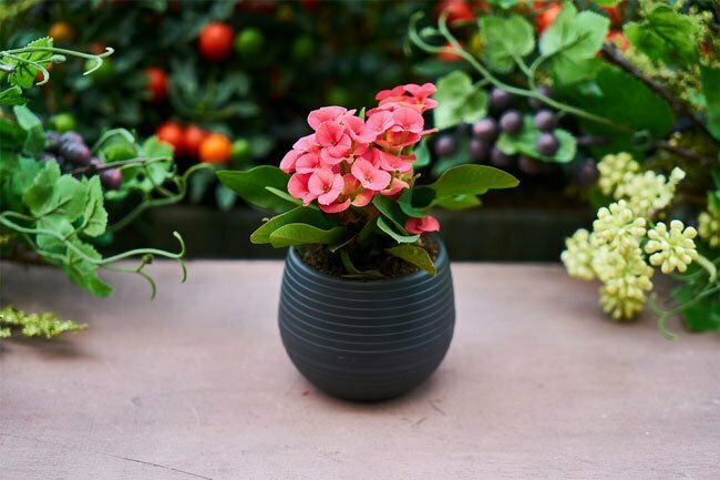 Gardening season is here!