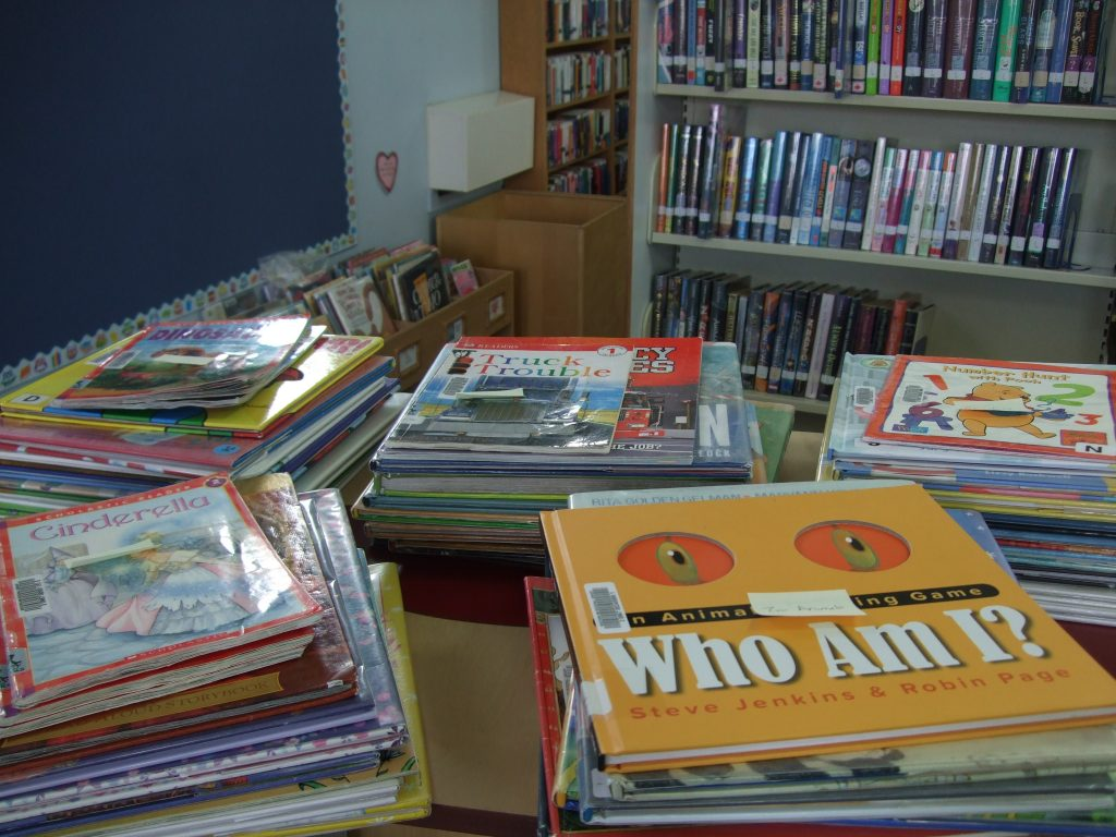 Book Bundles for Family Literacy Day